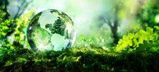 पर्यावरणाशी संबंधीत